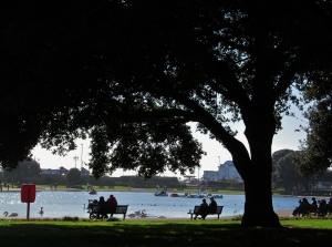 Canoe Lake, Southsea, from beneath the shade of a tree