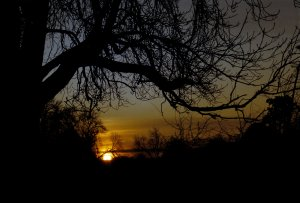 Sunset at Luck's Hill, West Malling, Kent