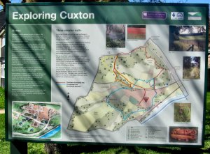 Exploring Cuxton...