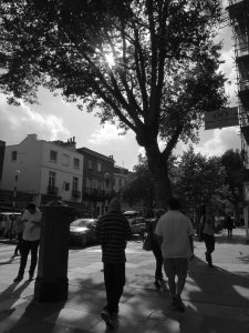 On the way back to Hampstead Tube station, this is the southern end of Hampstead High Street...
