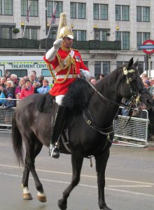 MountedLifeGuard