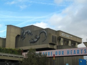 The Queen Elizabeth Hall and Purcell Room on London's South Bank (as seen from the ground floor of the Royal Festival Hall)