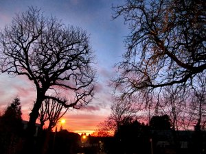Sunset, Woodside Grange Road, London N12
