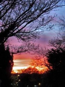 Sunset, Woodside Lane, London N12